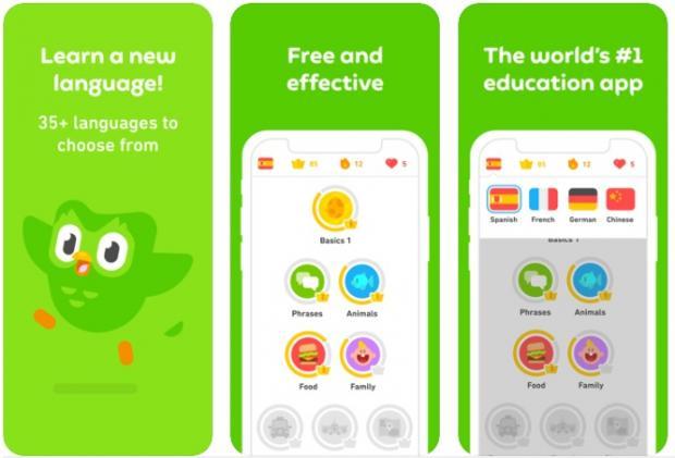 همهچیز درباره اپلیکیشن Duolingo ؛ بهترین برنامه آموزش زبان